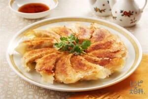白菜の焼き餃子