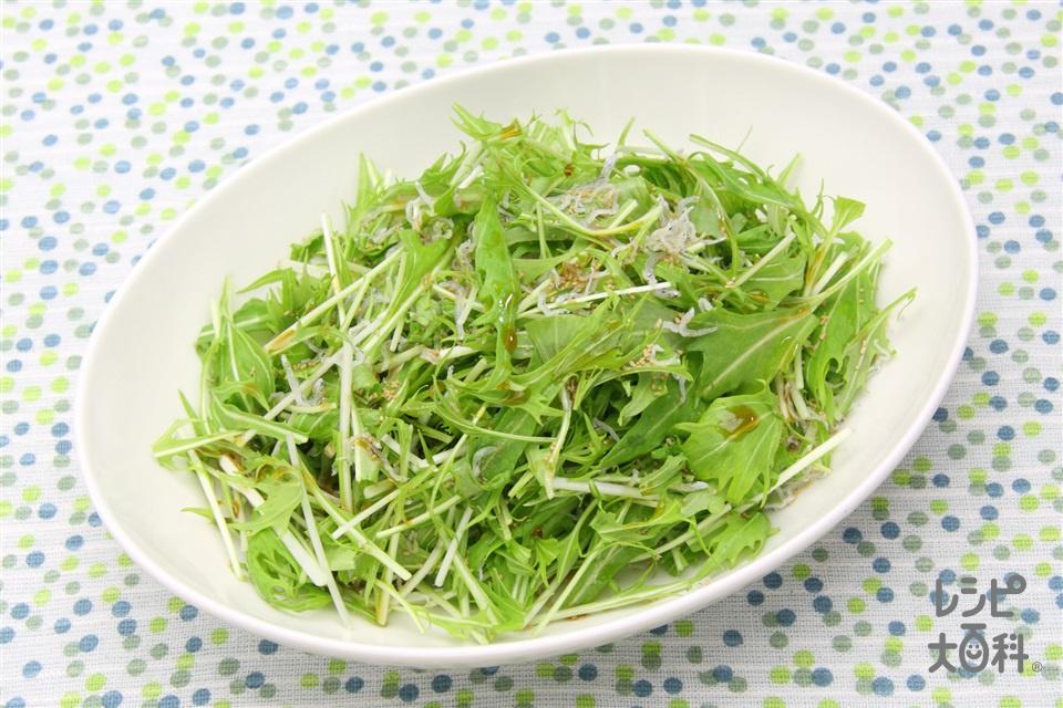 水菜サラダ(水菜+ちりめんじゃこを使ったレシピ)