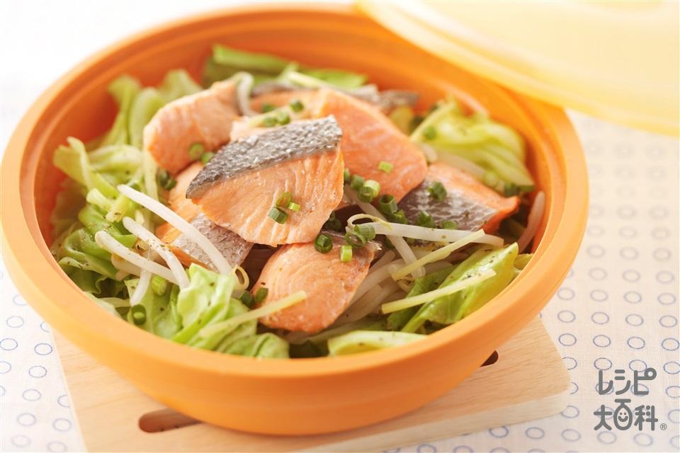 シリコンスチーマーで 塩鮭とキャベツ蒸し(甘塩ざけ+キャベツを使ったレシピ)