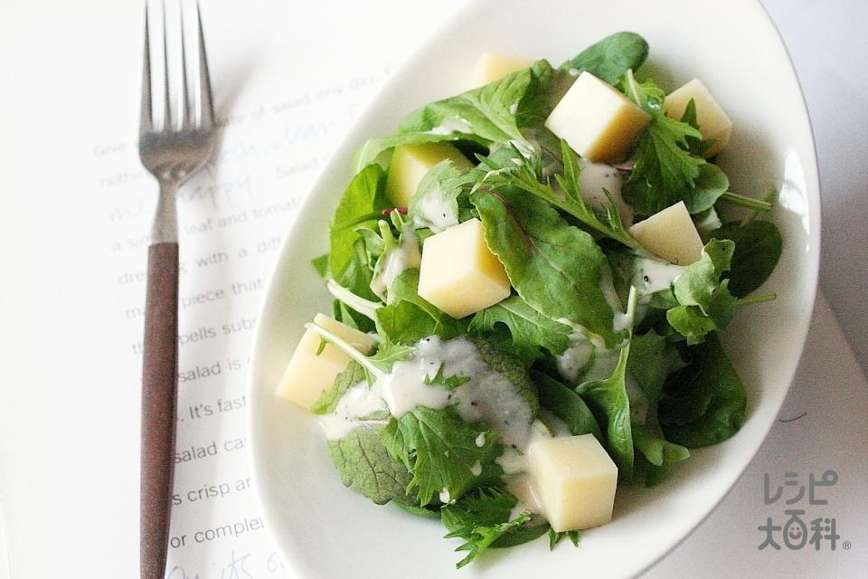 ベビーリーフとチーズのサラダ