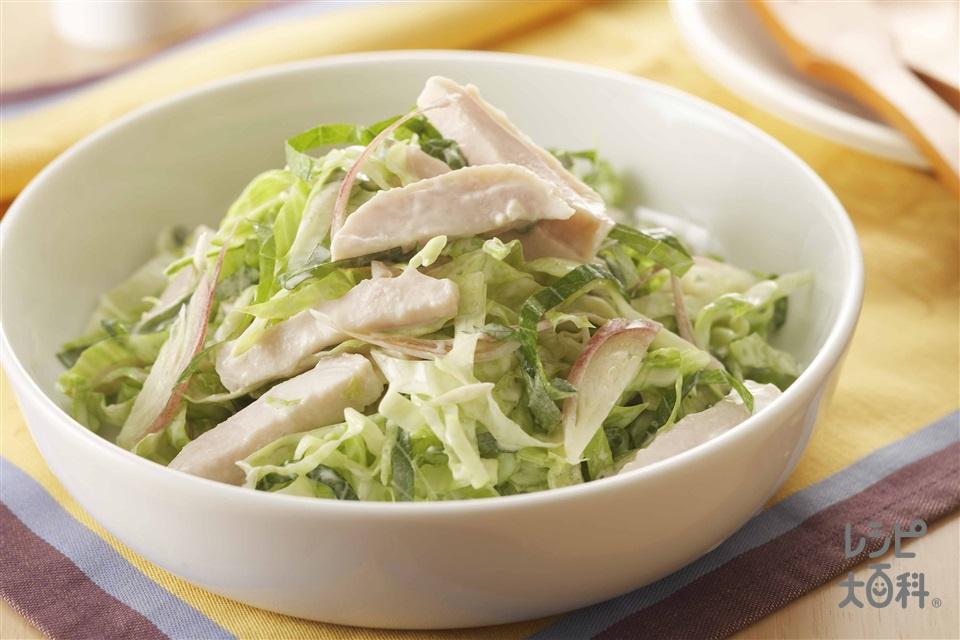 塩鶏香味コールスロー(レタス+みょうがを使ったレシピ)