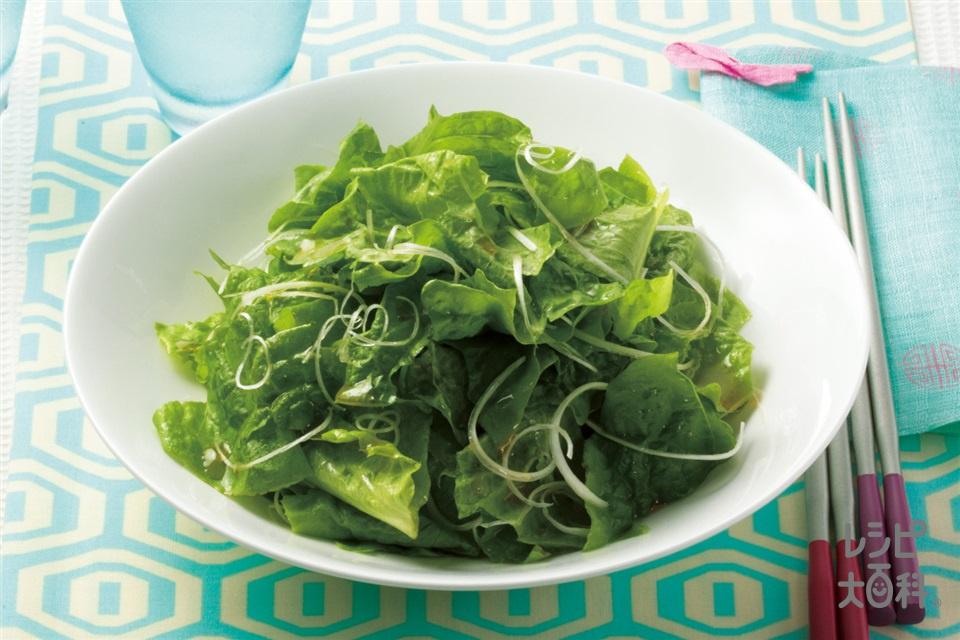 チョレギサラダ(サンチュ+白髪ねぎを使ったレシピ)
