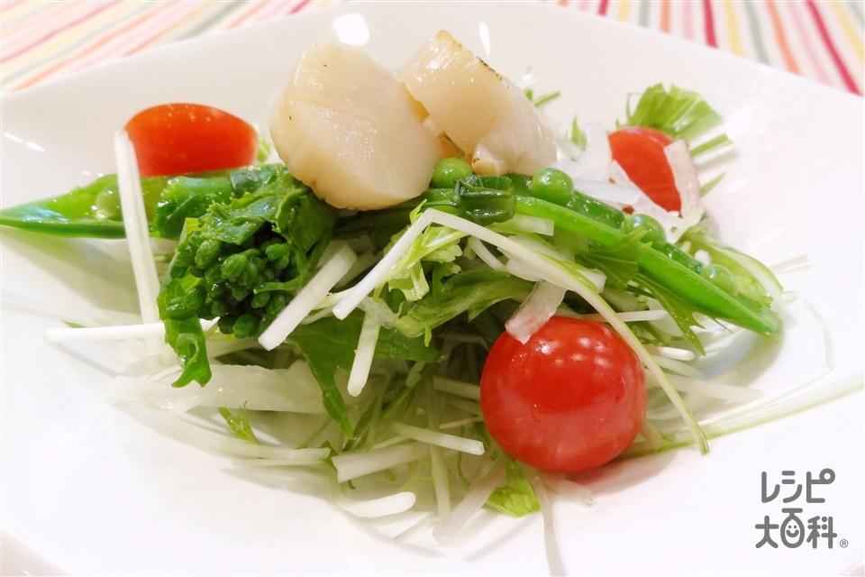 春の彩りサラダ(帆立貝柱+水菜を使ったレシピ)