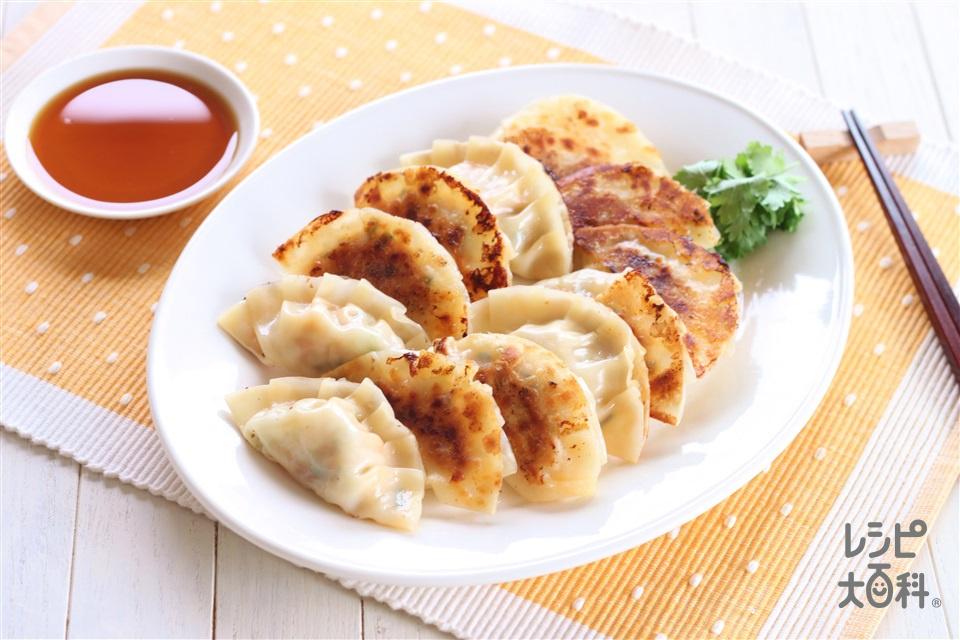 もやし餃子(鶏ひき肉+もやしを使ったレシピ)