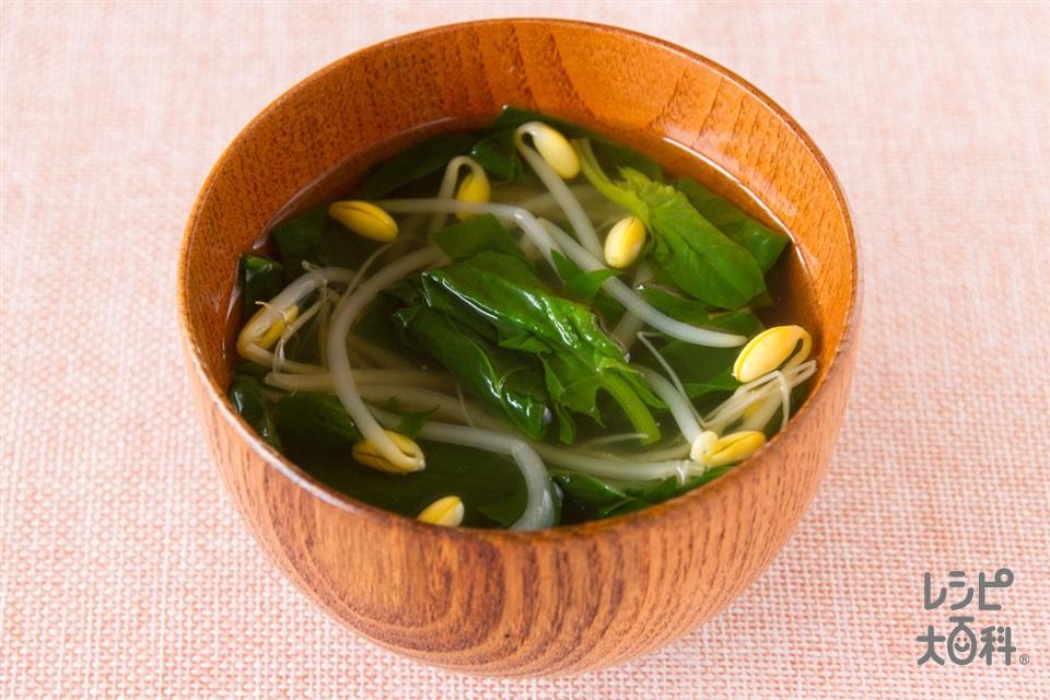 ほうれん草と豆もやしのすまし汁