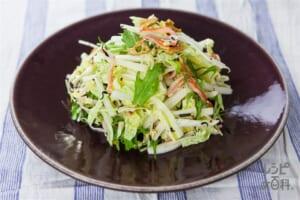 白菜とミズナのしゃきしゃき和風トスサラダ
