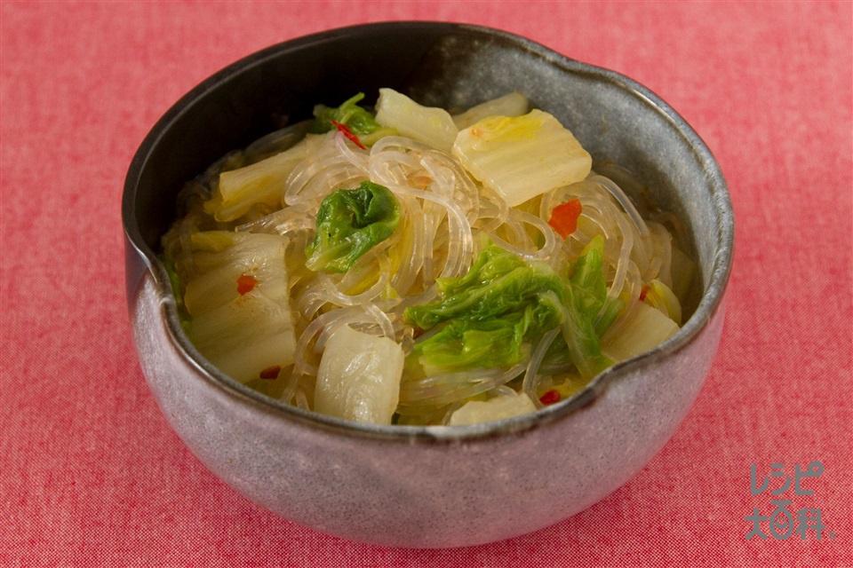 白菜と春雨のピリ辛煮(白菜+春雨(乾)を使ったレシピ)
