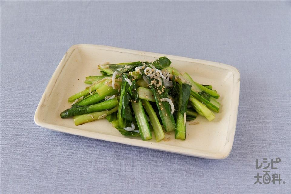 小松菜としらすの炒め物(小松菜+しらす干しを使ったレシピ)