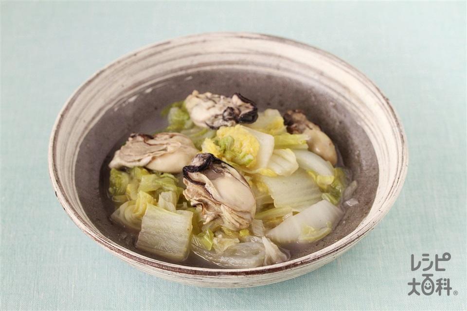 牡蠣と白菜の蒸し煮