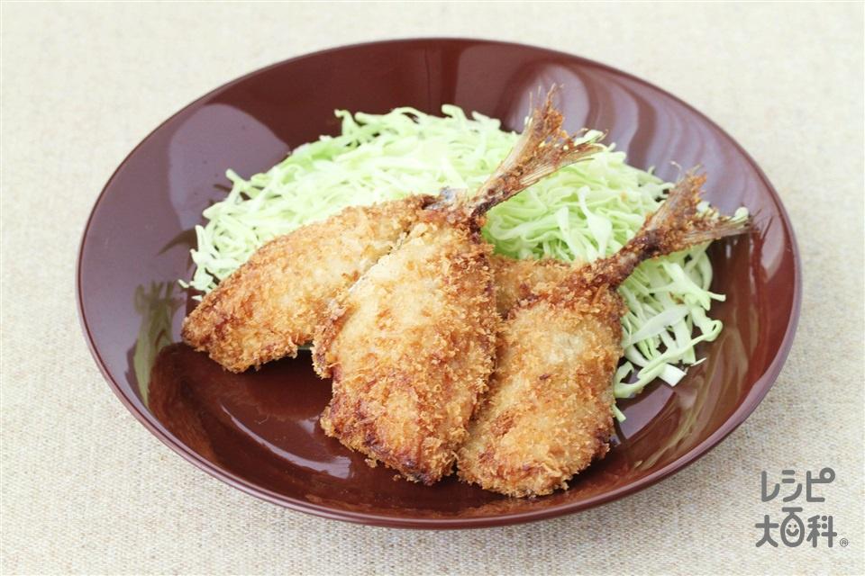 あじのカレーパン粉焼き(あじ(フライ用)+「瀬戸のほんじお」を使ったレシピ)