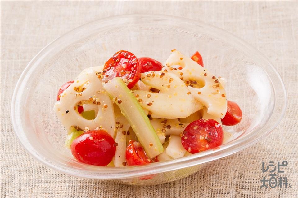 れんこんとセロリのマスタードサラダ(れんこん+ミニトマトを使ったレシピ)