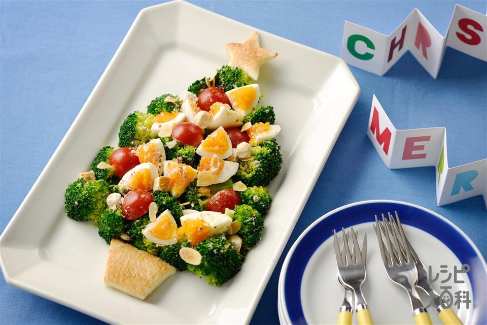 クリスマスツリーサラダ(ブロッコリー+ゆで卵を使ったレシピ)