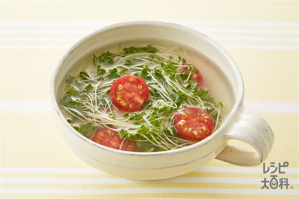 トマトとスプラウトのスープ(ミニトマト+ブロッコリースプラウトを使ったレシピ)
