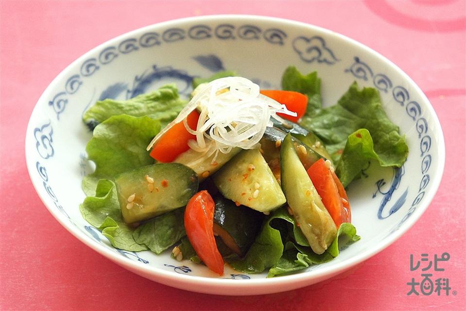 トマトときゅうりの中華あえ(きゅうり+ミニトマトを使ったレシピ)