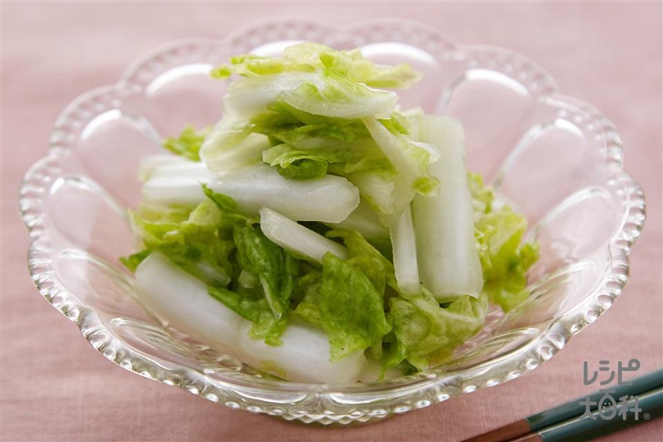白菜のかんたん漬け(白菜+レモン汁を使ったレシピ)