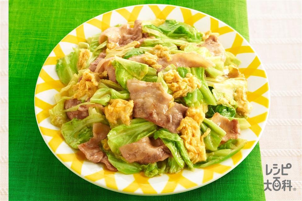 豚肉 と キャベツ の 料理