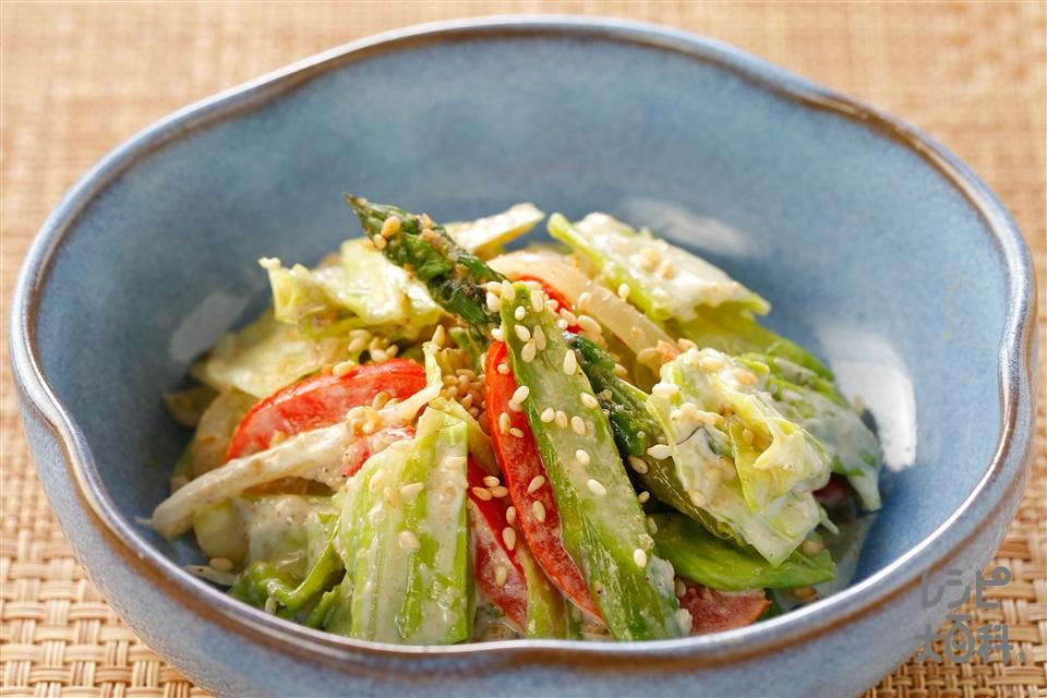 ゴマ香る春キャベツの和風マヨサラダ(春キャベツ+玉ねぎを使ったレシピ)