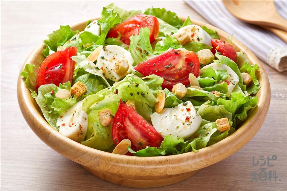 レタスとトマトとモッツァレラのトスサラダ(トマト+モッツァレラチーズを使ったレシピ)