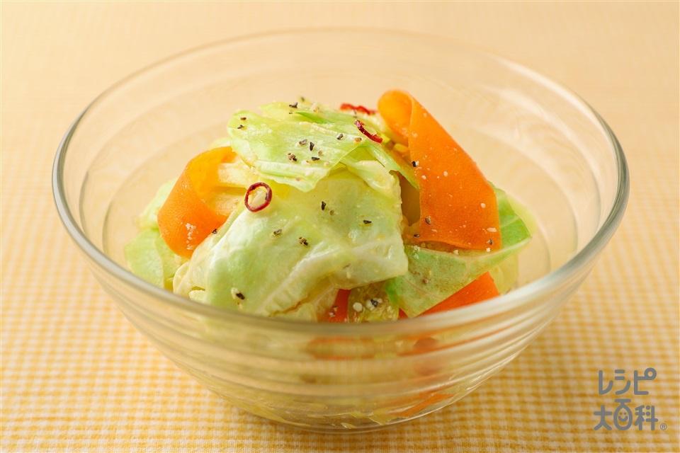 シェフのまかないキャベツマリネ(キャベツ+にんじんを使ったレシピ)