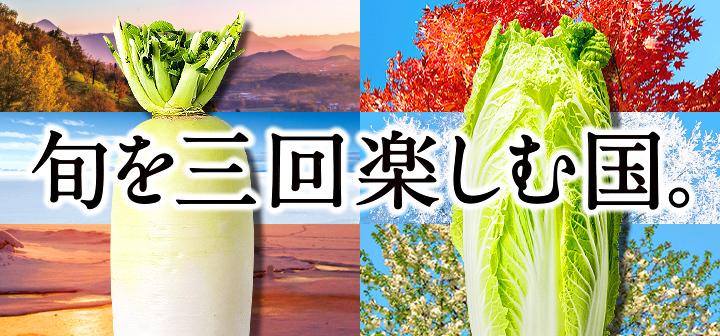 """""""旬を三回楽しむ国""""  大根・白菜のレシピ特集"""