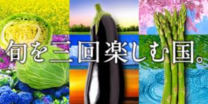 """""""旬を三回楽しむ国""""  きゃべつ・アスパラ・なすのレシピ特集"""
