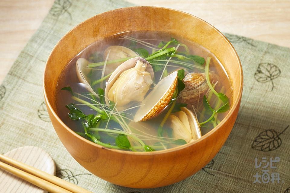 あさりと豆苗のすまし汁(あさり(殻つき)+豆苗を使ったレシピ)
