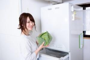 もう余らせない!冷蔵庫の野菜をおいしく食べきるヒミツ