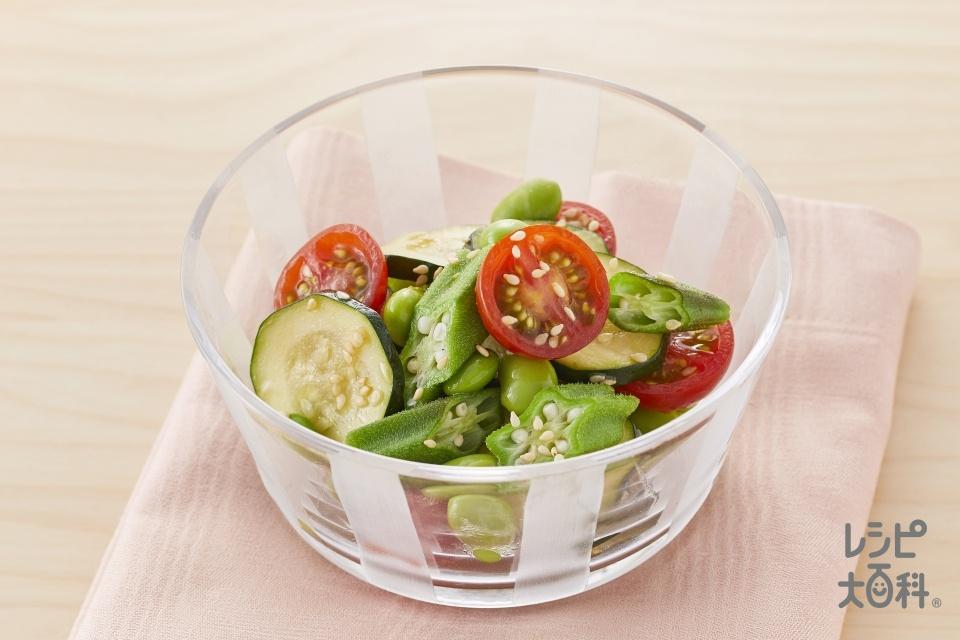 夏野菜の彩りナムル(ズッキーニ+オクラを使ったレシピ)