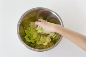 キャベツの簡単洋風サラダの作り方_0_0