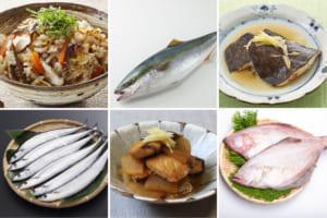 旬の魚をとことん味わい尽くそう♪秋に食べたいごちそう和食