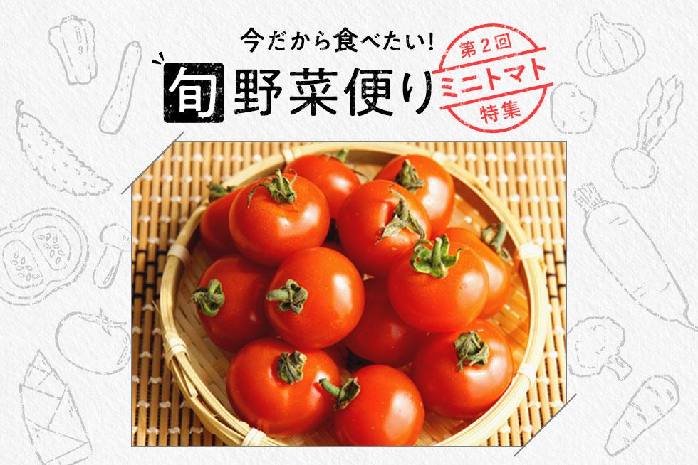 旬野菜便り♪添え物だけじゃない!ミニトマトの活用術