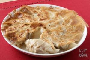 キャベツの焼き餃子