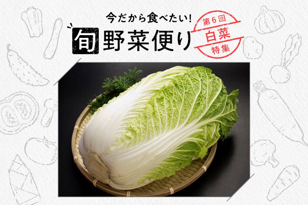 旬野菜便り♪丸ごと味わい尽くす!白菜使いこなし術