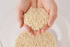 塩麹の作り方_0_1