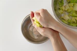 ちぎりキャベツの簡単中華風サラダの作り方_0_0
