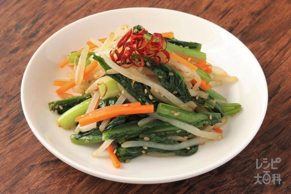 レンジで簡単!小松菜の和風ナムル(小松菜+もやしを使ったレシピ)
