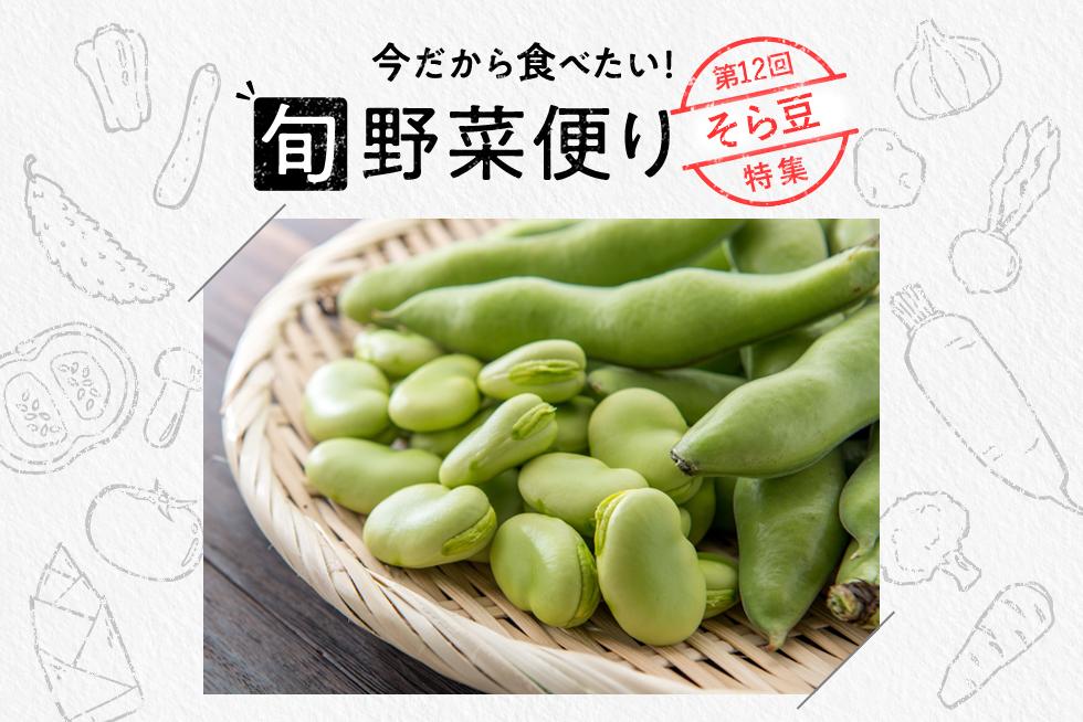 旬野菜便り♪春の味覚!そら豆の基本の調理方法をご紹介☆